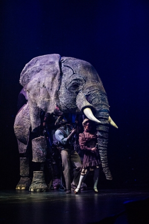 circus-1903-elephant-credit-mark-turner